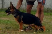 vlcsnap-2016-08-18-11h12m47s135